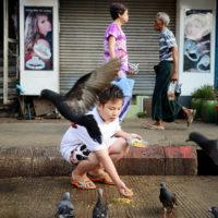Boy feeds pigeons in Yangon, Myanmar